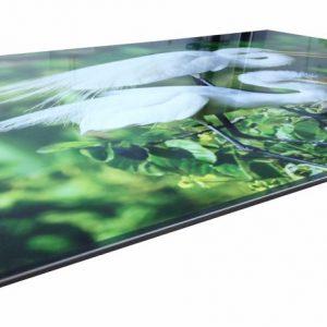 stampa taglio UV plexiglass