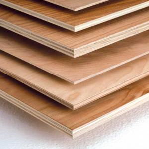 stampa taglio legno