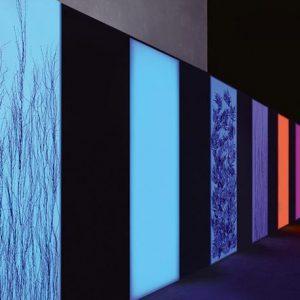 stampa taglio ecosolvente UV LED backlit