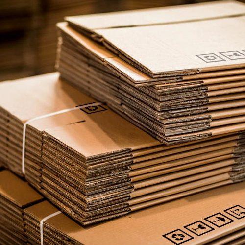 taglio stampa cartone packaging