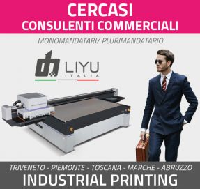 commerciale_cercasi_liyu_1